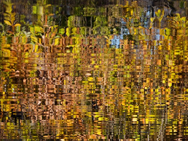 Color reflections of autumn foliage in a lagoon.