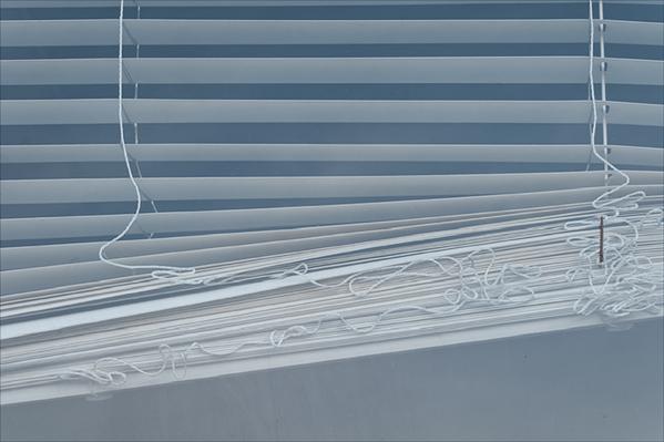 Window Blind №11 (Unruly) ©2014 April Siegfried